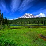 Mount Rainier from Reflection Lakes
