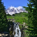 Mount Rainier from below Myrtle Falls