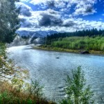 """""""Fog on the Hoh River"""""""